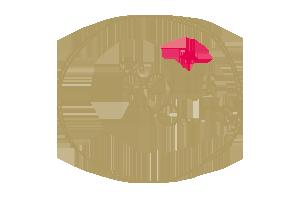 Logo Des petits hauts